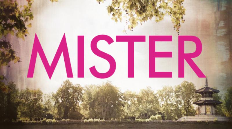 E. L. James se vrací s novinkou nazvanou Mister
